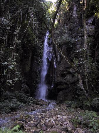 Gombe Stream National Park: waterfall in the park