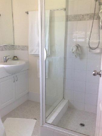 Trigg Retreat Bed & Breakfast: Bathroom, showing shower step.