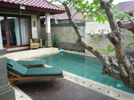 The pool of the 2-bedroom villa