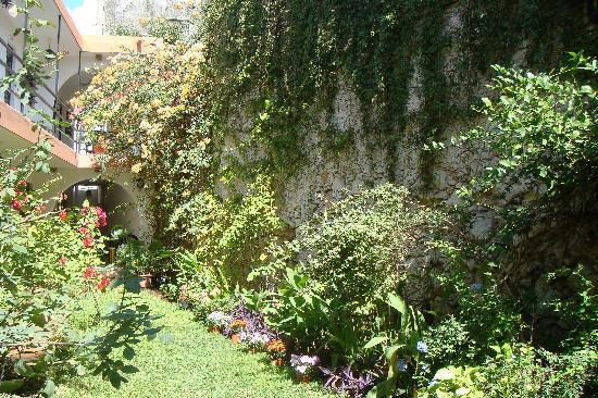 Hotel Mucuy: Jardin de l'Hôtel Mucuy