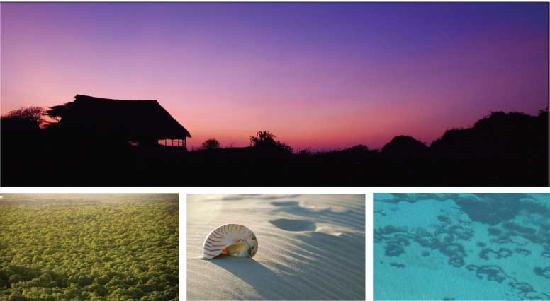 Kiwayu Island, Kenya: www.mikescampkiwayu.com