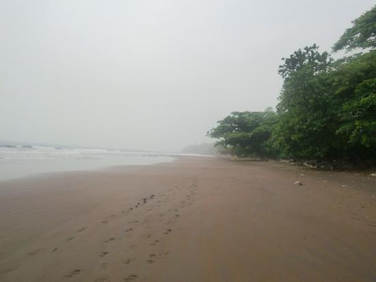 Hotel Seme Beach : La plage