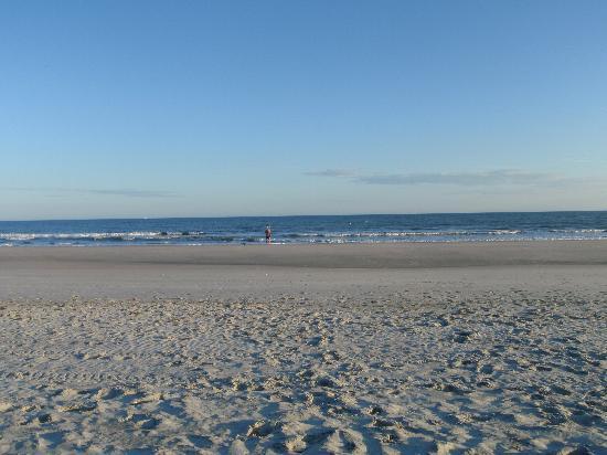Beach And Ocean Huntington Beach Reviews