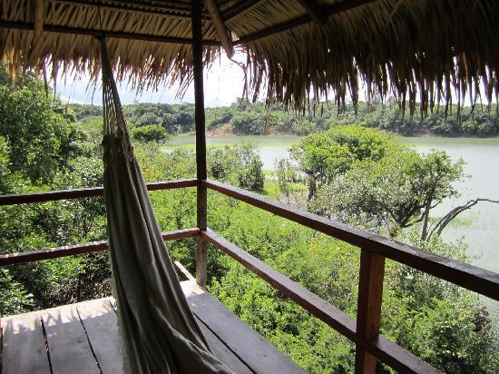 Juma Amazon Lodge: view from our room