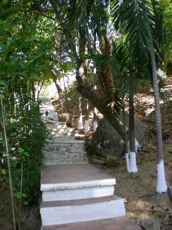 Posada Real Puerto Escondido: The walk down the hill to cocos...steep