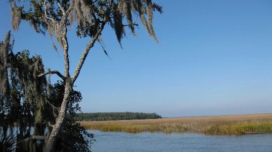 Fort McAllister State Historic Park Campground: Marshes around the campground