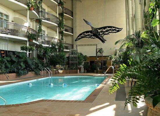 Levis, Canada: Jardin tropical intérieur