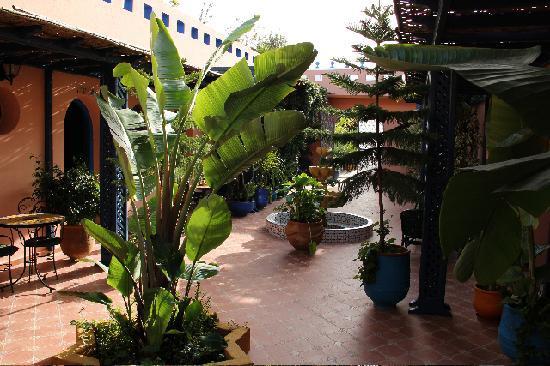 Riad Zaytoun : courtyard
