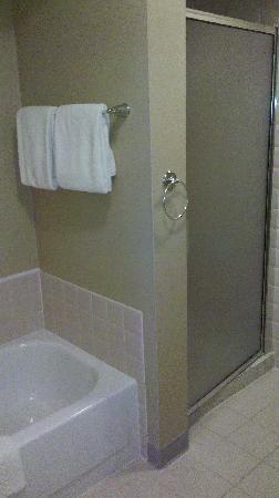 شيكاجو ماريوت سويتس ديرفيلد: Bathroom