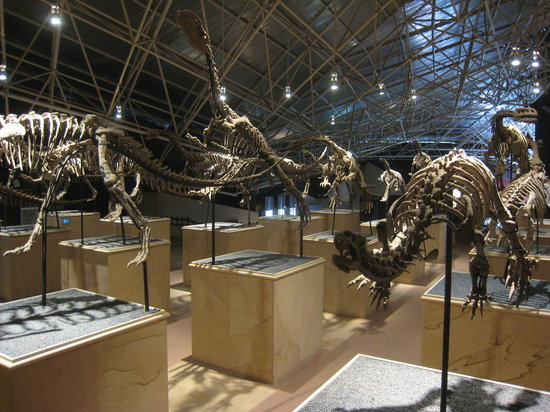 Lufeng Dinosaur Valley : Dinosaur party