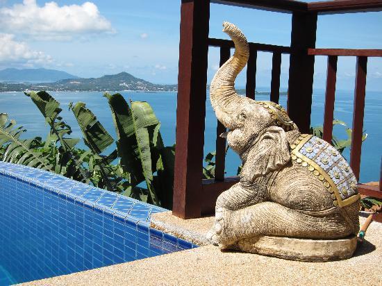 Sandalwood Luxury Villas : One meter from our room door_day