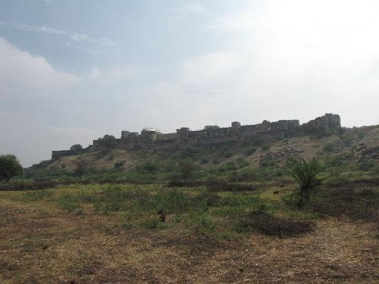 Sardargarh Heritage Hotel: View of the fort from the backside