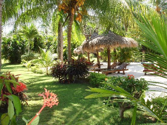 Medana Resort Lombok : nice garden