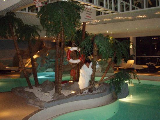 Sheraton Muenchen Arabellapark Hotel: Pool
