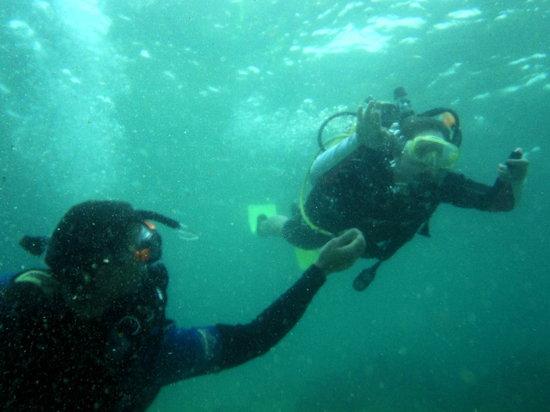 International Diving School : learning is easy :-)