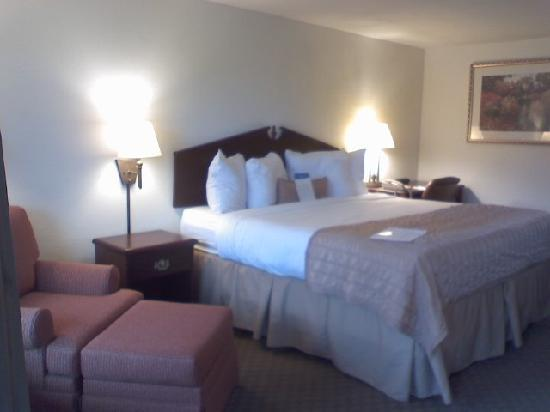 Baymont Inn & Suites Murfreesboro : King size  bed