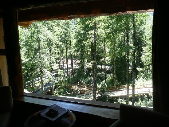 Huilo Huilo Nothofagus Hotel: View out our window