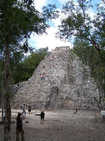 Real Playa del Carmen : Coba pyramid:  wow!  impressive!  what a view from up there too!
