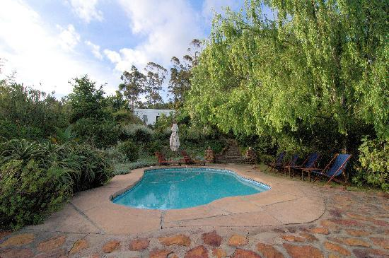 Augusta de Mist Country House: The pool