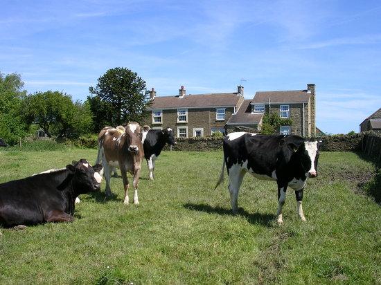 Cowclose Farm