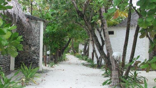 Gasfinolhu Island Resort : Les allées entre les bangalows