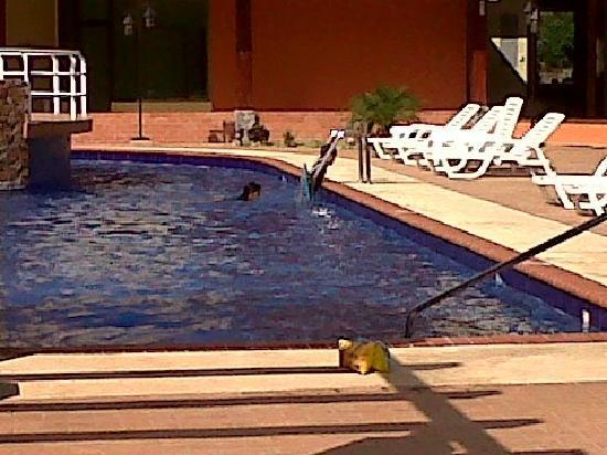 Gran Hotel Azuero: Piscina