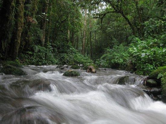 Sendero Panama Tours: Chiriqui Highlands