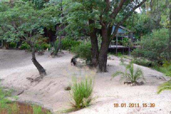 Nina Fishing Camp: Island beach