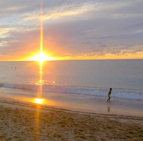 Shades Holiday Apartments: Paynes Bay sunset, just a few minutes walk away