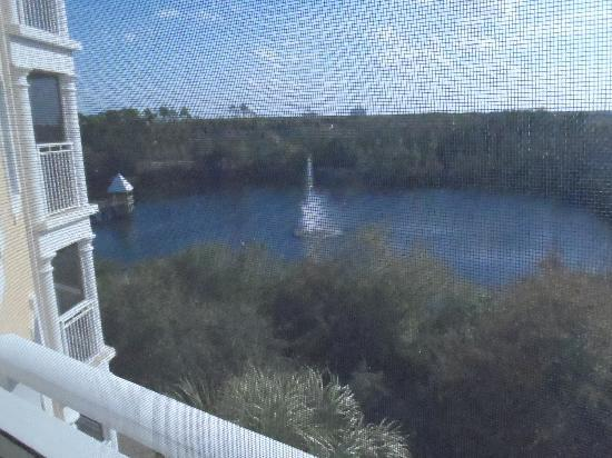 Hilton Grand Vacations at Tuscany Village: The view from our screened balcony/porch. A table & 4 chairs were out there.
