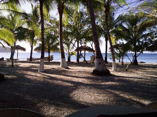 Fenix Hotel - On The Beach : Who could ask for a nicer beach?