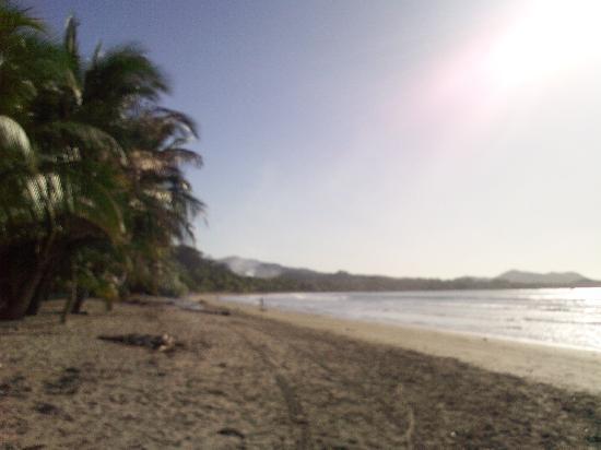 Fenix Hotel - On The Beach: Beach