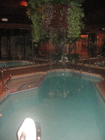 Sybaris Frankfort: Part of the pool w/waterfall in our Paradise swimming suite
