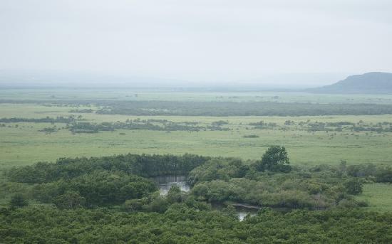 Kushiro Shitsugen National Park: 細岡展望台からの釧路湿原