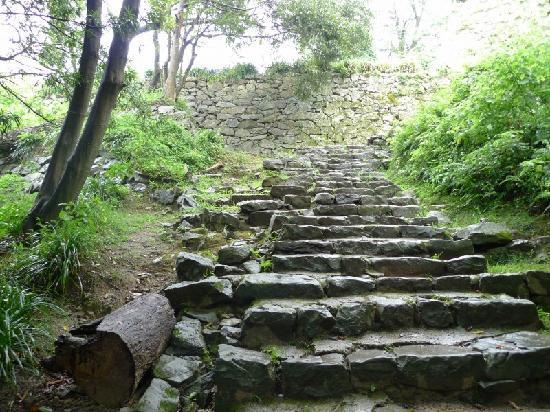 Uwajima Castle: 息がきれます