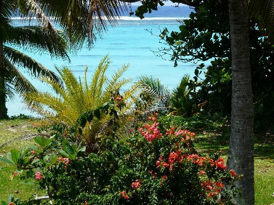 ไรนาบีชอพาร์ทเม้น: By the beach accross the road