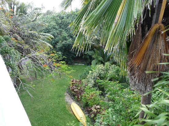 Raina Beach Apartments : View of the garden from deck