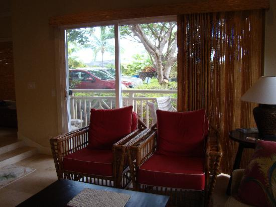 Regency Resorts Condominiums: Actual view from livingroom lanai