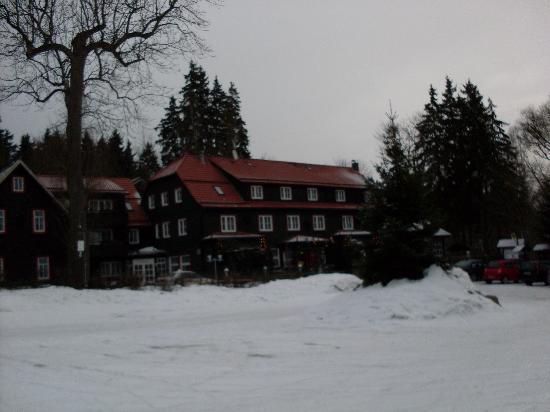Hotel Grüne Tanne Mandelholz: Winteransicht
