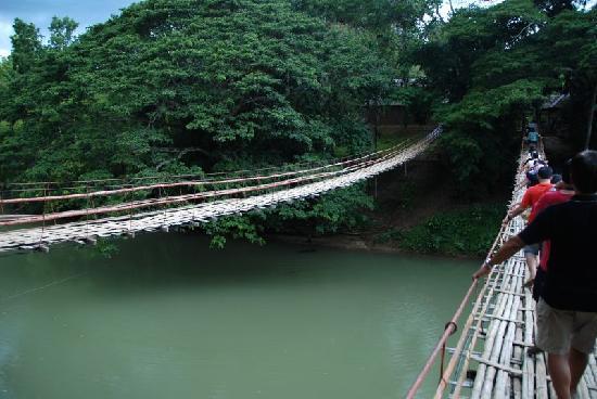 Bohol Island One Day Tour - PTN Travel Corp: とっても揺れるロボック川の吊り橋