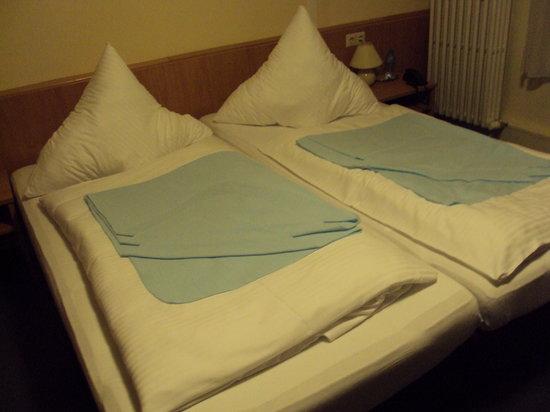 Hotel Villa Kisseleff: stanza
