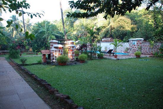 Casa Aleixo: Backyard