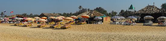 ฟีนิกซ์ พาร์คอินน์ รีสอร์ท: candolim beach