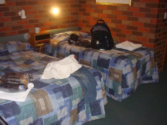 Comfort Inn Cedar Lodge : Twin Room