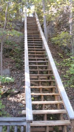 Great Cacapon, WV: Stairway leading from River House WV down to the river