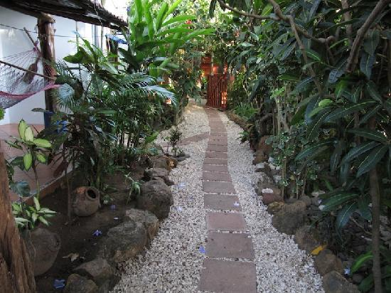 Tico Adventure Lodge: Walkway to pool