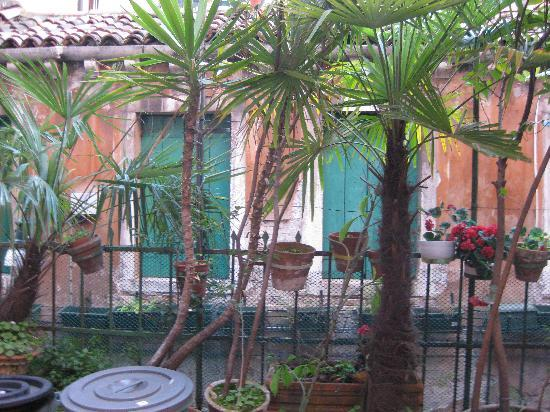 Ai Boteri Hostel: interior terrace