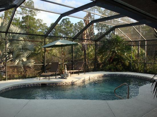 A Dream Come True Guest House : Pool