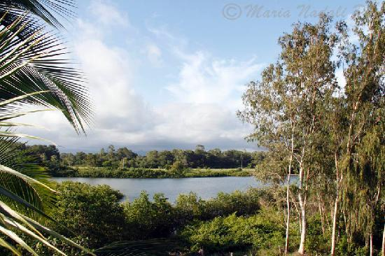 Casa Laguna: lagoon