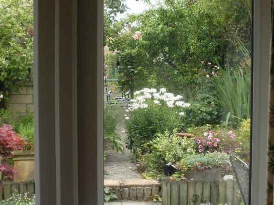 London Road Garden Annex : looking into the garden